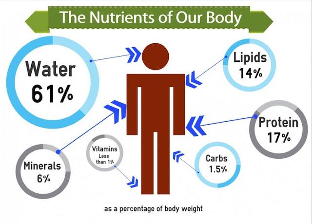 Chăm sóc cơ thể, bài 1: Dinh dưỡng cần thiết cho cơ thể 1
