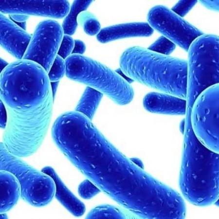 Tìm hiểu Công thức lợi khuẩn hoàn chỉnh 70 tỷ CFU của Dr.Mercola