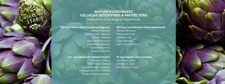 Viên uống bảo vệ tế bào, chậm lão hóa Pure Synergy CELL PROTECTOR™ 7