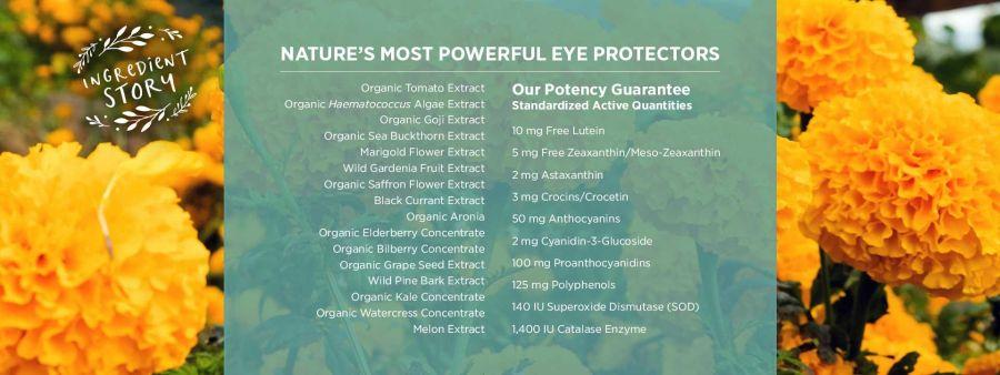 Viên uống bảo vệ mắt Pure Synergy EYE PROTECTOR® 7