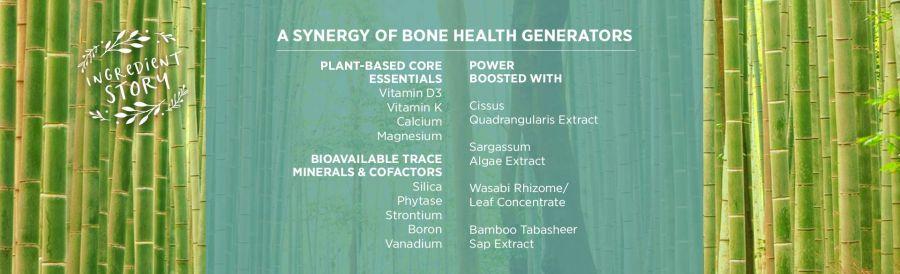 Viên uống phục hồi xương khớp Pure Synergy Bone Renewal 7
