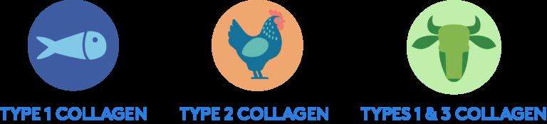 Collagen thủy phân từ cá chứa thêm rau xanh Sproos Collagen Greens 8