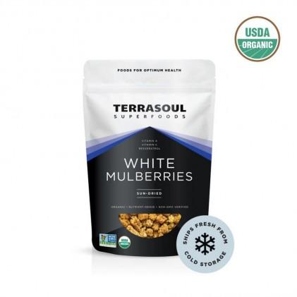 Quả dâu tằm trắng hữu cơ Terrasoul WHITE MULBERRIES 1