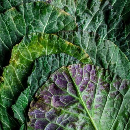 Thịt có gây ung thư? Sản phẩm glycat hóa bền vững AGEs